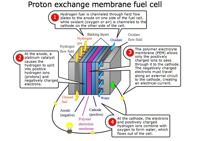 Fuel Cell Cars Use Hydrogen Gas And Release Into The Atmosphere