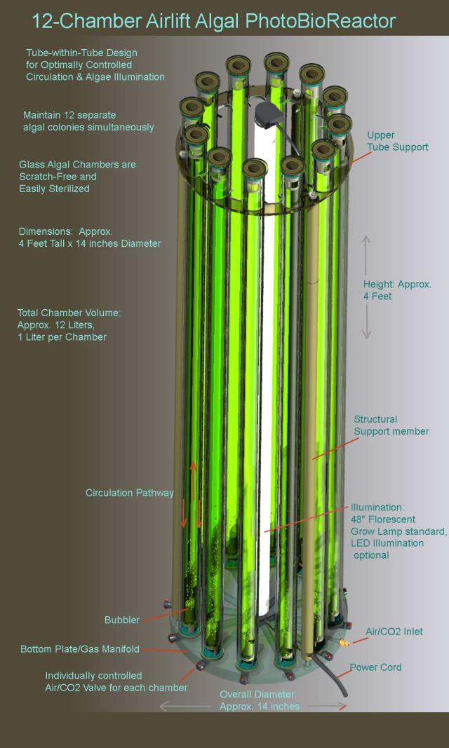12 chamber reactor